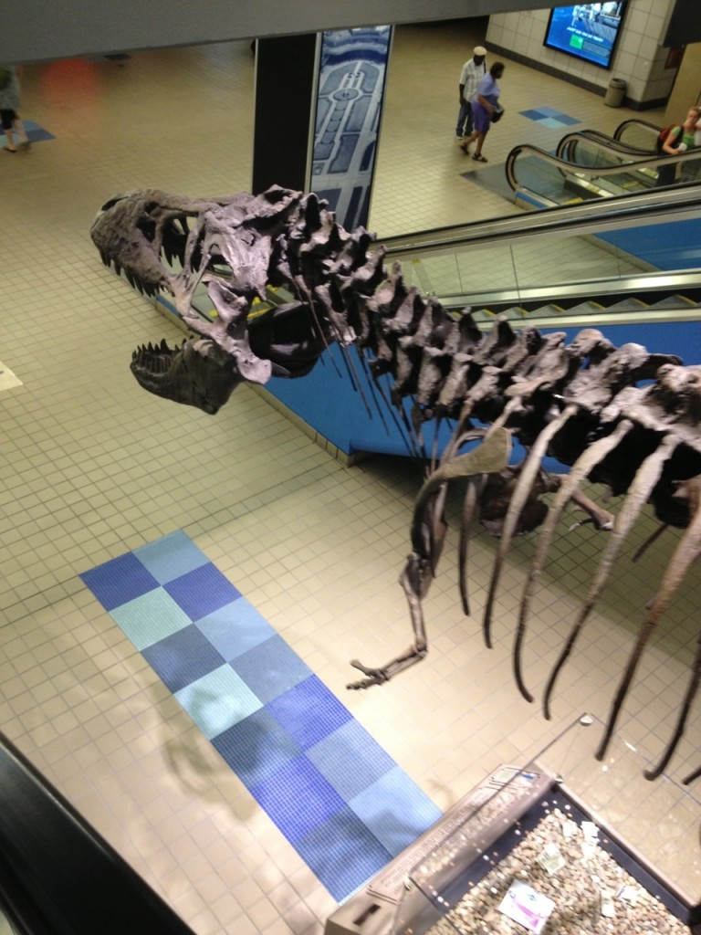 Tyrannosaurus skeleton pointing the way to Baggage Claim at Pittsburgh Int. Airport. It has gotten to the point that I can navigate it with hardly any help from the signs.