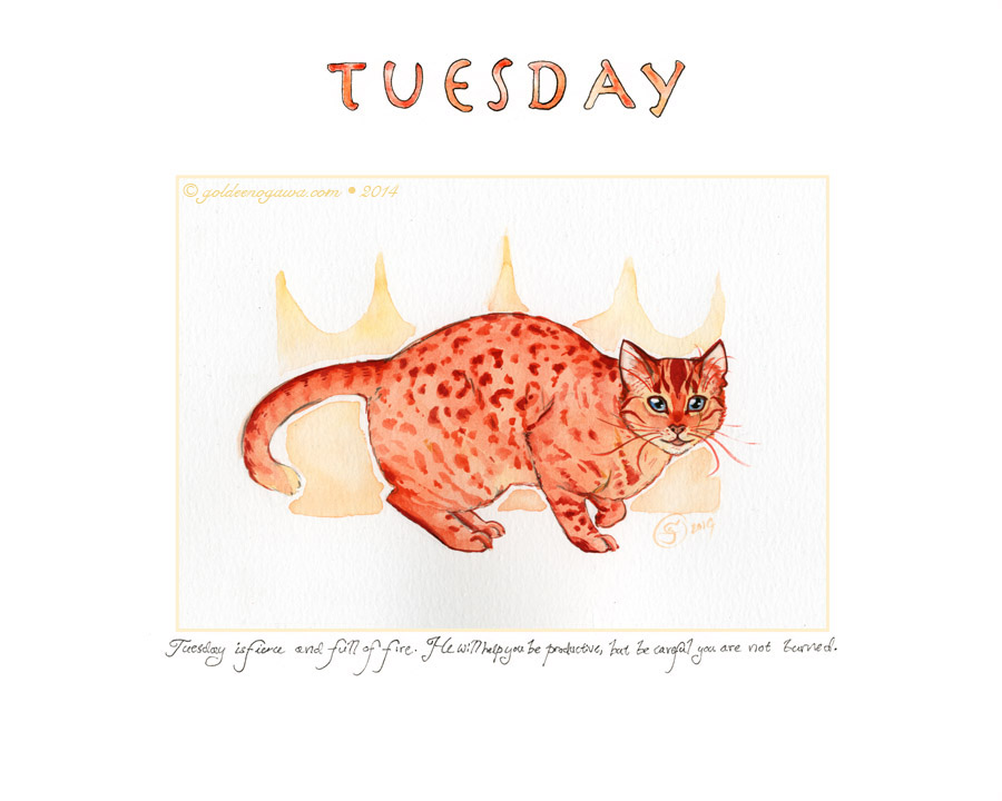 Tuesday is fierce and full of fire. He will help you be productive, but be careful you are not burned.