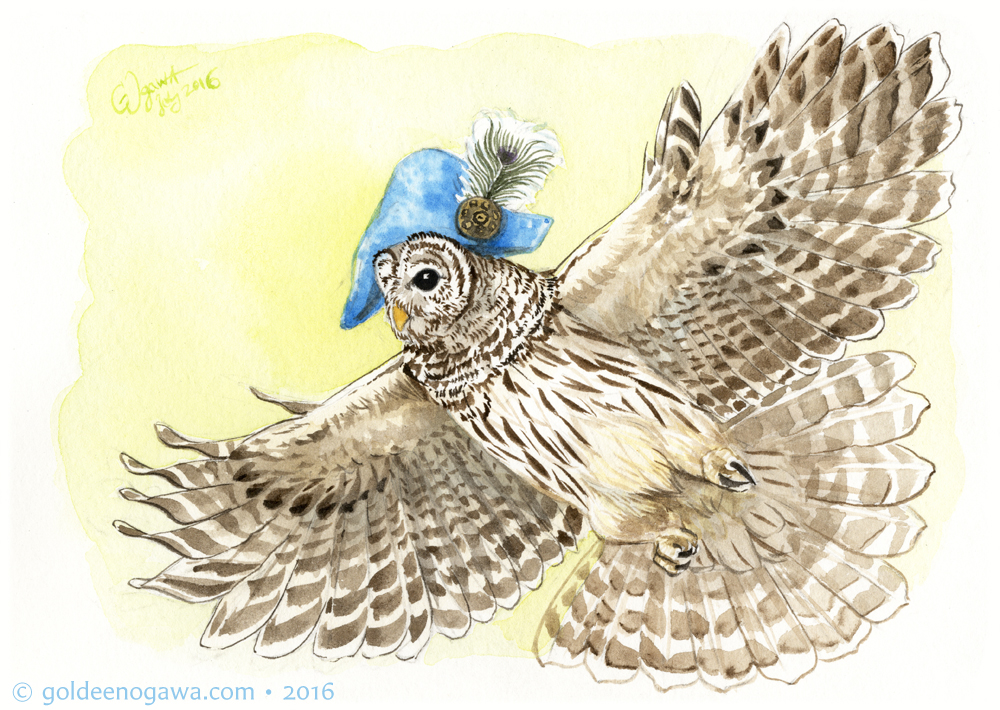 Barred Owl in a Strange Hours Seafoam Bicorn